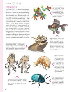 Книга Дизайн персонажей. Концепт-арт для комиксов, видеоигр и анимации изображение 2