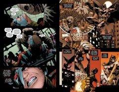 Комикс Отряд самоубийц. Пинок в зубы. Книга 1. жанр Боевик, Боевые искусства, Приключения, Супергерои и Фантастика