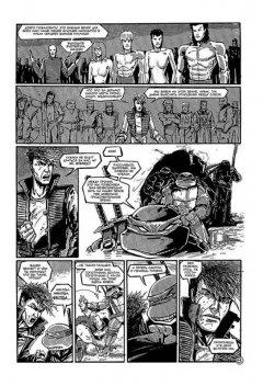 Комикс Черепаховый Суп (Полное издание) жанр Боевик, Боевые искусства, Комедия, Приключения и Фантастика