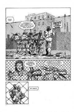 Комикс Рассказы о Черепашках-Ниндзя. издатель Illusion Studios
