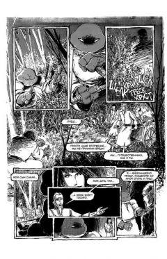 """Комикс Классические """"Черепашки Ниндзя"""" №19 издатель Illusion Studios"""